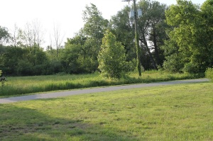 Johnson Property Trail