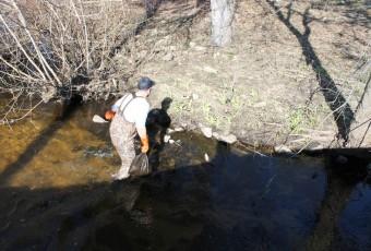 Community Building Development Team Cleans Up Land Along the Creek